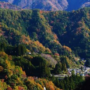 平岡ダムに紅葉を見に行って来た