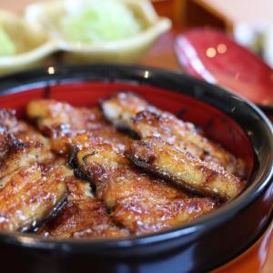 テイクアウトOK【有名うなぎ店東京進出!】浜松で145年の歴史を持つ老舗うなぎ料理店『濱松うなぎ