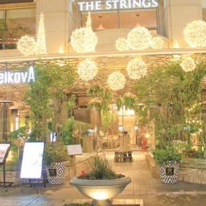 表参道の欅並木とインターナショナルキュイジーヌを楽しむカフェ&ダイニング ZelkovA