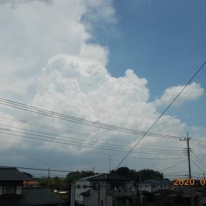 【埼玉南部は凄かったらしいですね】雨の降り方が極端すぎます。