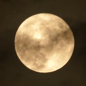 【ブルーシールとフルムーン】昼間はアイス・夜は満月