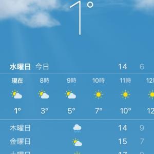 寒いらしい