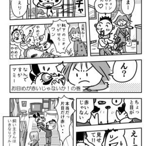 「お目めが赤いじゃないかの巻」 漫画フレンチブルドッグ