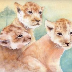 ライオン三兄弟