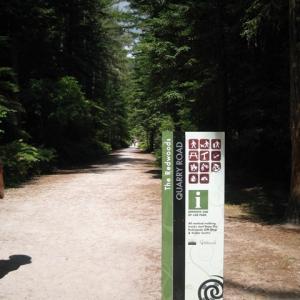 ロトルアで緑のハイキングと地熱帯散策+タウポで大迫力の滝見学