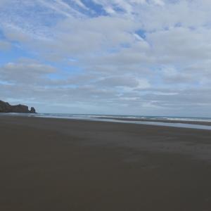 珍景!突如現れる広大な砂丘と西オークランドで人気の絶景バー