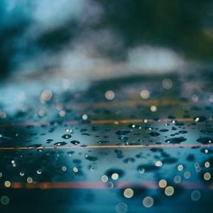 雨粒の行方(再掲載)