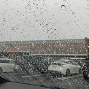 めっちゃ雨w