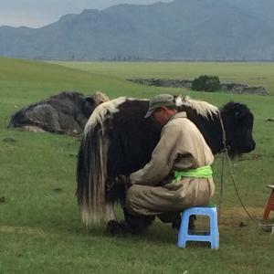 モンゴル通信2019年 アルハンガイへの旅(2) 7月5日