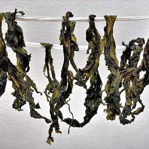 乾燥わかめ と 干し椎茸完成♪ と おうちごはん