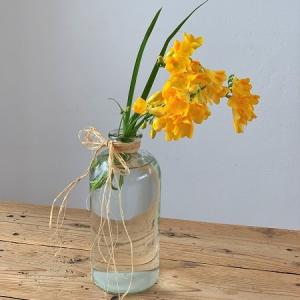 またまた 春の花.。*゚・*:.。.: