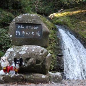日本の滝100選~天然記念物☆阿寺の七滝