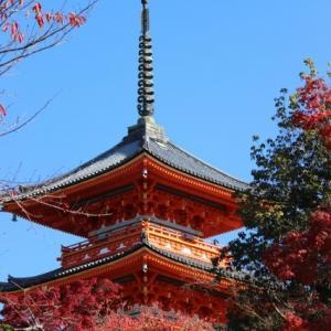 清水寺はワンコOK~ ぶらり京都♪