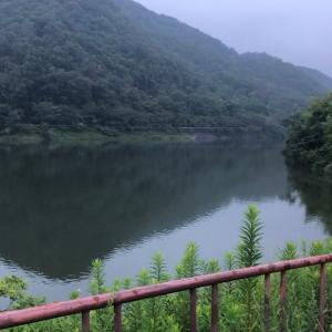 釣り日誌no.390 青野ダム 出勤前のバス釣り in summer drop mylegs i