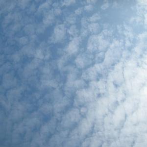 10月20日(日曜日)☆SABBIA USER FREE SURFIN' DAY*練習会 -044-