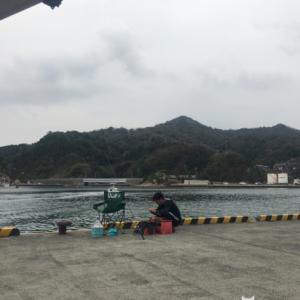 11月3日 鳥取 波激落ちで皆右往左往のノーサーフ?田後港で釣り