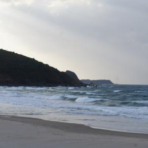 11月8日 鳥取 小波からのチョッピー無人サーフで草生えるwww