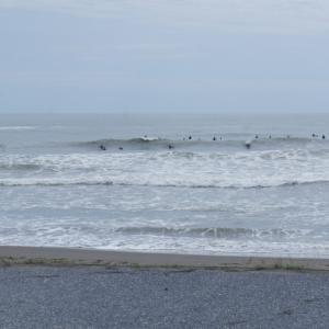 4月29日 爆風吹き荒れ流されパクチーで湯あたりの千葉北