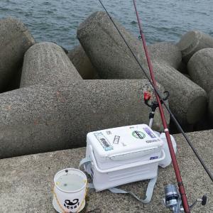 外さない釣り。