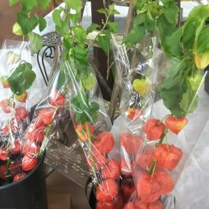 お盆用の仏花 販売致します。