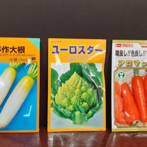 売れ筋の秋まき野菜種子とご案内