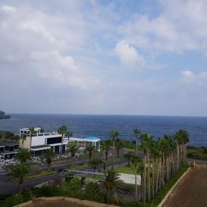 朝から… in済州島