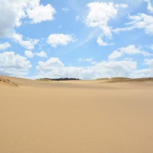 水のない砂漠を彷徨うセミナージプシーの錯覚。