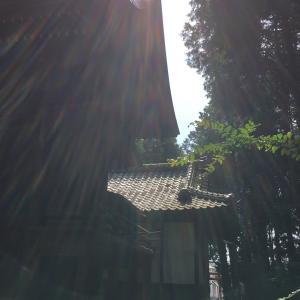 波動を上げて行きましょう‼️(一粒万倍日、神吉日、神社、光の写真)