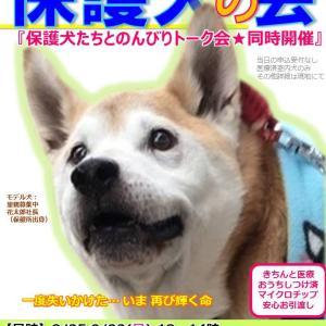 保護犬の会