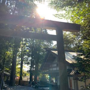 2年ぶりの椿大神社