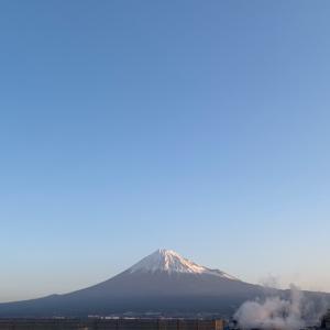 週刊あさ富士|Weekly Morning Mt. Fuji 2/24〜