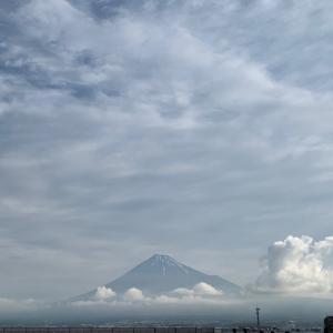 週刊あさ富士|Weekly Morning Mt. Fuji 5/25〜