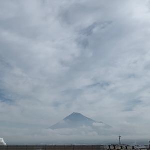 週刊あさ富士|Weekly Morning Mt. Fuji 6/15〜