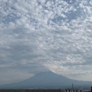 週刊あさ富士|Weekly Morning Mt. Fuji 7/20〜