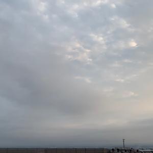 週刊あさ富士|Weekly Morning Mt. Fuji 8/3~