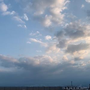 週刊あさ富士|Weekly Morning Mt. Fuji 7/26〜
