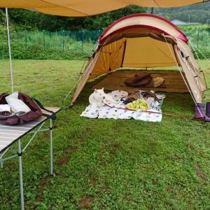 高山 ドッグランWANーWAにてキャンプ