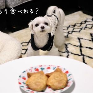 ☆ 呑気に食べてる場合じゃない? ☆