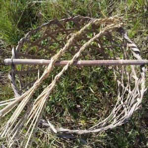 ハデ干し米を実践。
