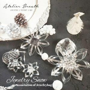 It's NEW☆LESSON オーナメント『Jewelry SNOW』