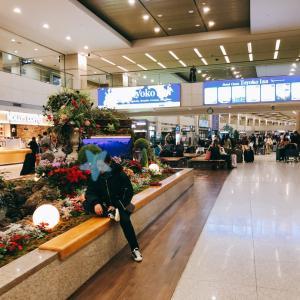 こんなの初めてみた!!仁川空港ですざまじい行列w(゚o゚)w