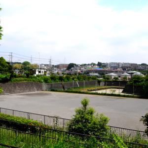 大山道・まほろば・岡津道コースを歩く
