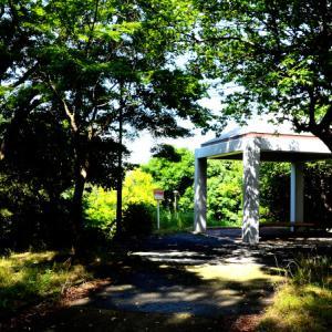 武相国境・緑の森を歩く