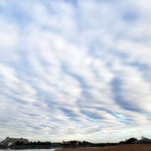 日乗俳句 その六百十五 冬の雲