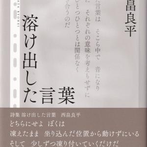 入手した3冊を紹介する(8)
