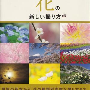 届いた5冊(2)