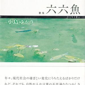 小島ゆかり・歌集「六六魚」を読む