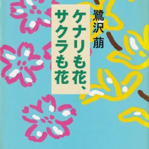 鷺沢萠「ケナリも花、サクラも花」を読む