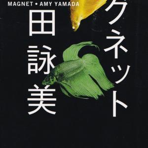 山田詠美「マグネット」を読む
