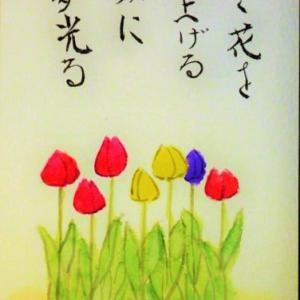 咲く花を見上げる顔に夢光る